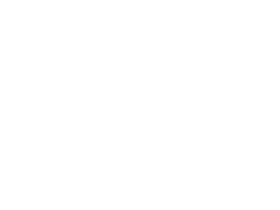Washington Street Journal